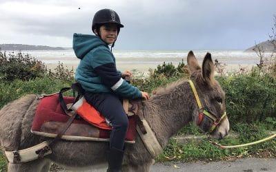 1ère balade à dos d'ânes      en  bord de mer dans les            Côtes d'Armor !
